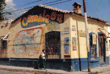 Bar el Camaleon in Ajijic